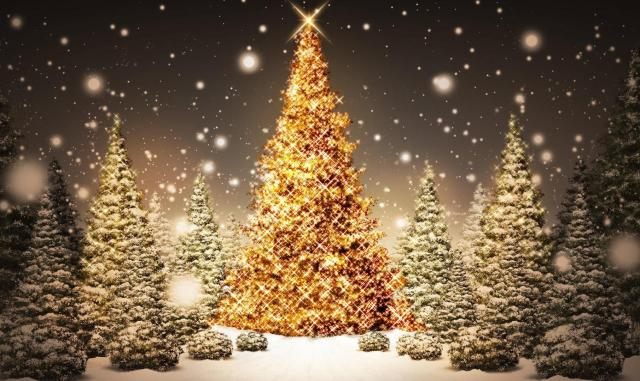 fond_d_ecran_sapin_de_noel-christmas_tree_wallpaper